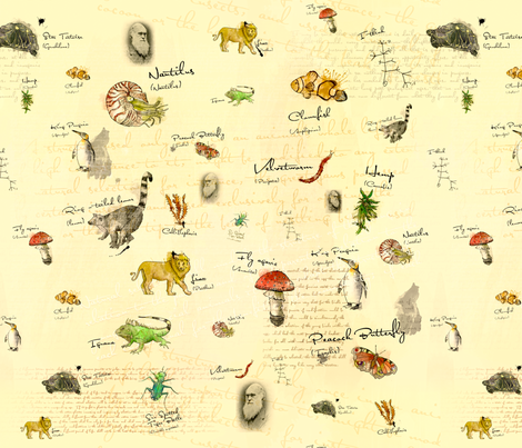Charles Darwin fabric by lisa_brown on Spoonflower - custom fabric