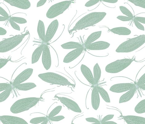 Rgreen_lacewing_white_background_shop_preview