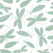 Rgreen_lacewing_white_background_shop_thumb