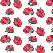 Rladybugs_shop_thumb