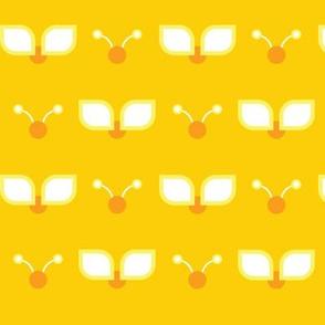 Sunshine Bugs!
