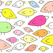 Rainbow Birds