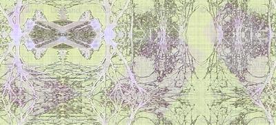 tundra frost_500