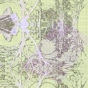 Rpale-lavender500_shop_thumb