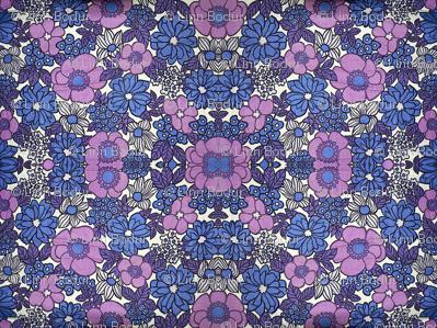 purple4_1