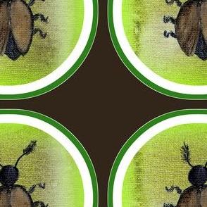 Käfer #1