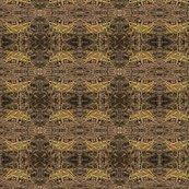 Rgrasshopper-egypt500_shop_thumb