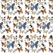 Rrrbutterfly_spoonflower_large_shop_thumb