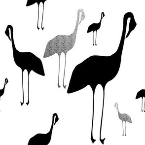 grayscale cranes