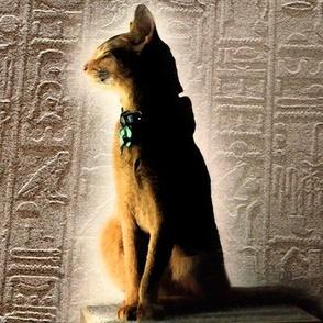 egyptfabric