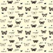 Rbutterflies-are-free_shop_thumb