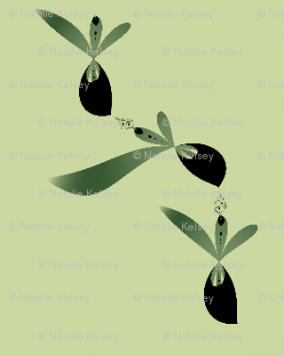 Olive Ole!