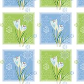 Rcrocus_in_snow2_shop_thumb