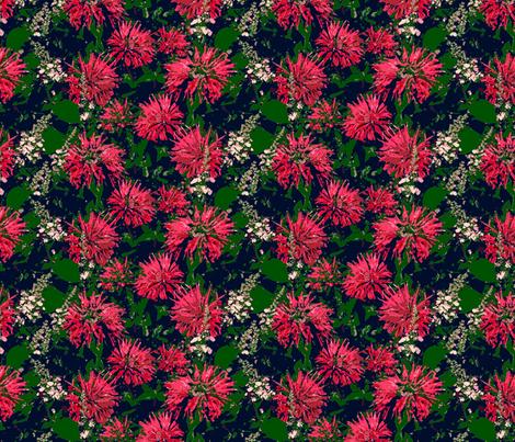 Bella Bergamont  fabric by helenklebesadel on Spoonflower - custom fabric