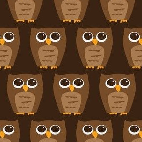 Small Wise Brown Owl