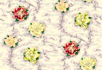 Lenten_roses_in_snow