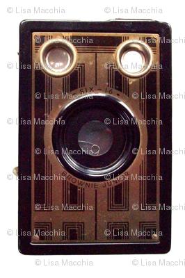 Vintage Brownie camera fabric