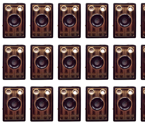 Vintage Brownie camera fabric fabric by itybitybags on Spoonflower - custom fabric