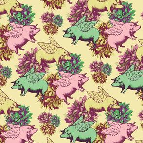 dahlia pigs