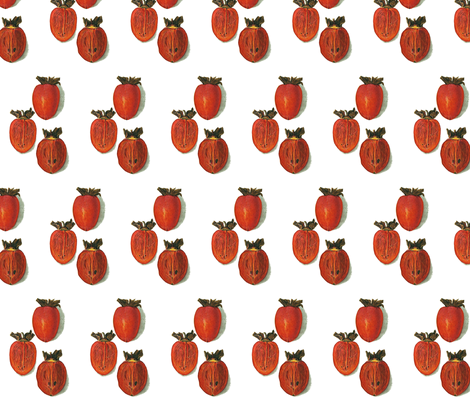 best persimmon fabric by saltlabs on Spoonflower - custom fabric