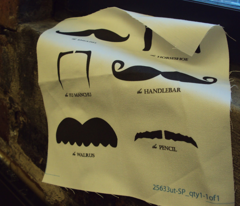 Rrrrmustache_gallery_comment_36549_preview