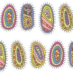 quintbacteria1