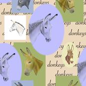 Cameo Donkeys