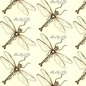 Dragonfly sketch