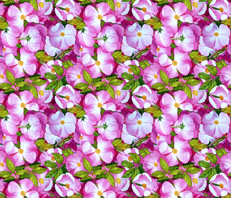 Wild Rose fabric by helenklebesadel on Spoonflower - custom fabric
