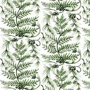 fernberrygreen