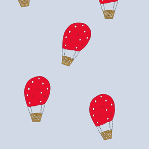 hotair_balloon
