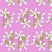 Rjj_pink_shop_thumb