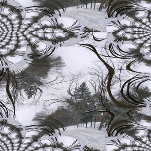 Fractal Traced Tree