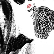 Spoonflower_butterfly-kiss-shelley-jones_shop_thumb