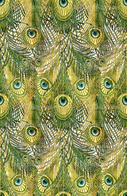 Nouveau peacock feathers