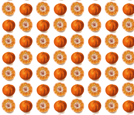 best tangerine  fabric by saltlabs on Spoonflower - custom fabric