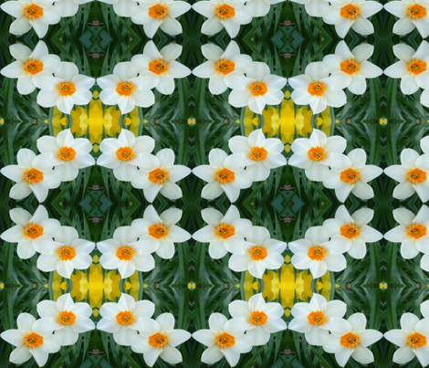 edit_3_stretch_daffodils fabric by khowardquilts on Spoonflower - custom fabric