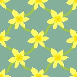 Daffodil Grid