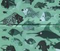 New_fish_rpt2_comment_28926_thumb