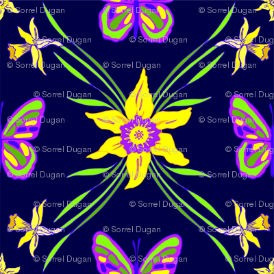 daffodil_in_navy