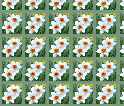 Bordered Daffodil Beauties D-8 fabric by khowardquilts on Spoonflower - custom fabric