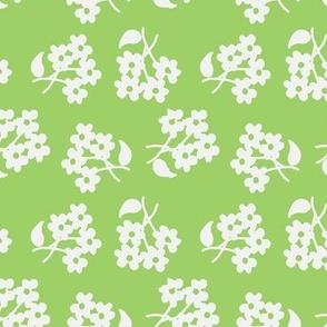 White flowers on spring green