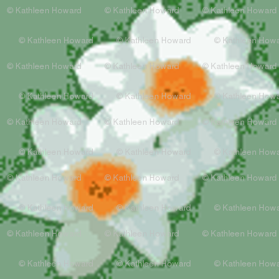 Small Daffodils_with_sage_background-D-1