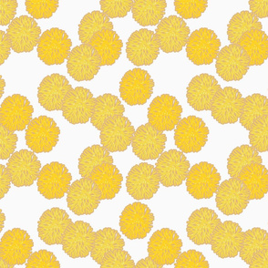 coral_yellow