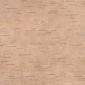 Rrr0_birchbark4pink-brown_shop_thumb