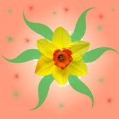 Rrrrdaffodils_shop_thumb