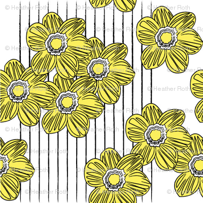 LINES & DAISIES
