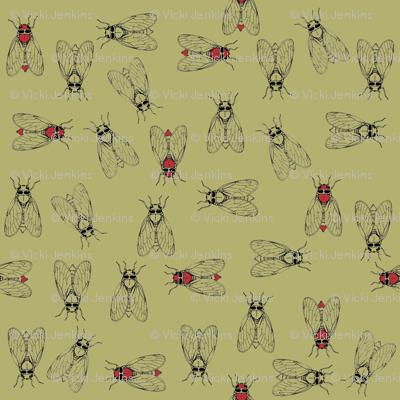 Cicada 2