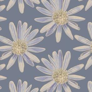 Daisy Garden - Blue
