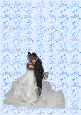 Bride and Groom-Blue-169